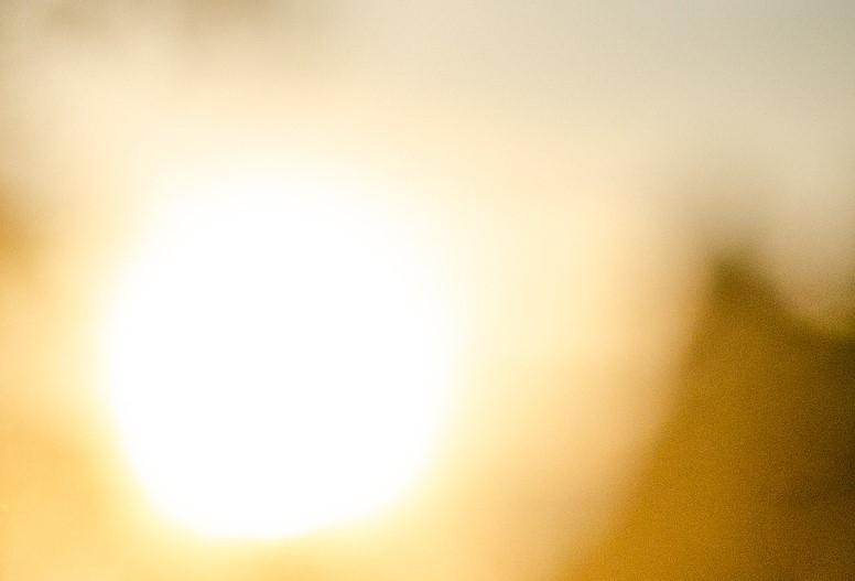 7 March - Sun seekers